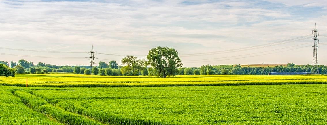 Landschaft am Niederrhein 03